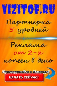 vizitof.ru